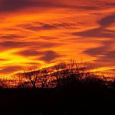 Encore un matin 😍 #nofilter #ciel #soleil #soleillevant #matin #leverdesoleil #sudouest #béarn #aquitaine #nouvelleaquitaine #skyline #sky #skyporn #sun #sunset ou #sunrise je sais plus lol
