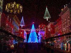 Osborne Family Spectacle of Dancing Lights ~Disney's Hollywood Studios.