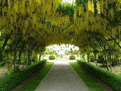 Brodsworth Hall and Gardens (Doncaster, England): Address, Phone Number, Historic Site Reviews - TripAdvisor