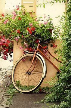 La Bicyclette aux Geraniums - Fine Art Print