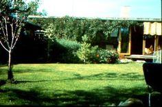 Furubergvn. Ark, Plants, House, Home, Plant, Homes, Planets, Houses
