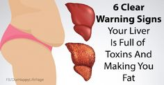 6 Signs That Your Liver Is Full Of Toxins And Making You Fat (And How To Stop It)