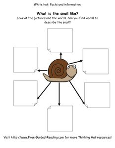 16 Thinking Hat Worksheets for The Snail And The Whale.pdf
