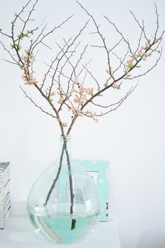 quince blossom by wood & wool stool, via Flickr