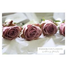 VINTAGE ROSES WEDDING FLOWERS ❤ liked on Polyvore featuring home, home decor, floral decor, pink flower bouquet, pink rose bouquet, flower bouquet, rose bouquet and pink home decor