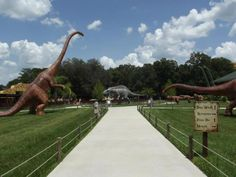 Dinosaur World in Plant City (between Tampa and Orlando) is a kid's dream come true. Plus, it's less expensive (and less crowded) than Florida's larger theme parks.