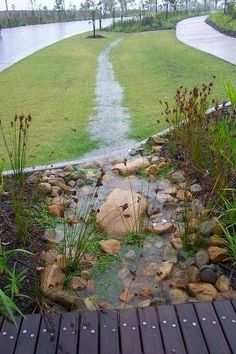 rain gardens! Makes the excess water look better! #raingardens