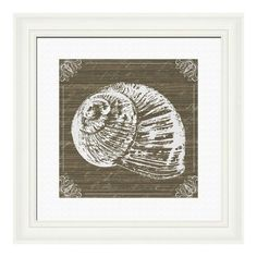 Pinned this natural shells ii from the shoreline prints event at