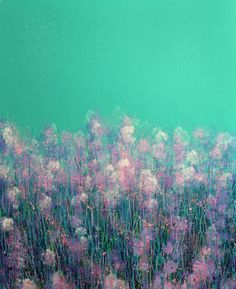 Pink Spring Flowers by Marc Todd   Artfinder #Spring #Flowers #Pastel #Painting
