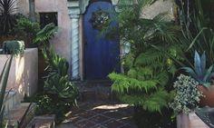 Plantas para portales o porches