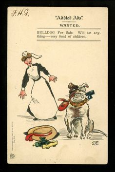 Bulldog postcard Cartoon Comic International Art #776 Vintage Wanted Advertising  - 1906