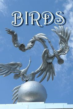 Monuments to storks decorate various cities of Russia or Belarus as well as of Ukraine