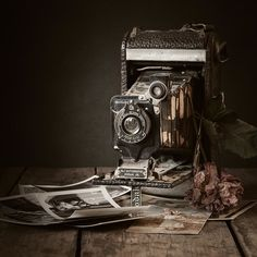 Timeless - Photography by Amy Weiss Antique Cameras, Old Cameras, Vintage Cameras, Object Photography, Fine Art Photography, Photography Tips, Pregnancy Photography, Photography Challenge, Camera Photography