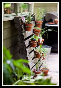 vertical garden with terracotta pots