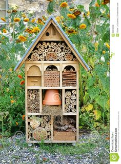 Craftsman Built Insect Hotel Decorative Wood House - Download From Over 46 Million High Quality Stock Photos, Images, Vectors. Sign up for FREE today. Image: 35016338