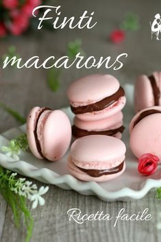 Macarons, Cooking Time, Cooking Recipes, Biscuit Cake, Chocolate Treats, Latest Recipe, Mini Desserts, Pavlova, Creative Food
