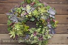Wreath with bromeliads, from Succulent Container Gardens