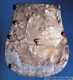 Tarsolylemez, Kenézlő. Forrás: www.vilagbiztonsag.hu