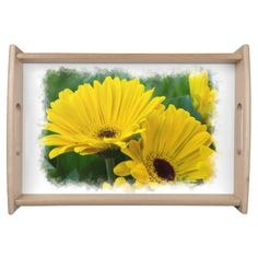 Yellow Gerber Daisies White Border Trays from Florals by Fred #zazzle #gift