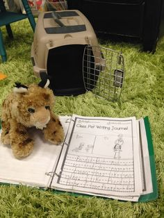 Class Pet Writing Journal with stuffed animal 1st Grade Writing, Kindergarten Writing, Teaching Writing, Writing Activities, Writing Ideas, Teaching Ideas, Literacy, Icebreaker Activities, Writing Practice