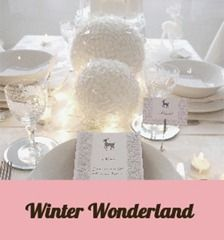 Winter Wonderland Party Ideas by Bird's Party