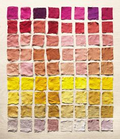 DIYs from The Modern Natural Dyer + Giveaway! | Design*Sponge