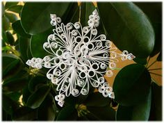 spazio alla mia fantasia: snowflake quilling