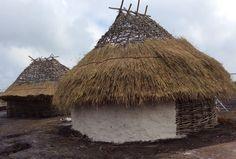 Reconstructing Stonehenge neolithic houses
