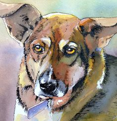 Layla by Suzy @ Painted Pets