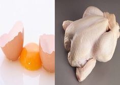 What nutrient components chicken meat and egg has,how it helps our body system