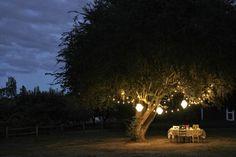 Amedeo Liberatoscioli: CONSIGLI UTILI : Illuminazione da giardino  L'aspetto più importante perché il giardino appaia curato ed accogliente (soprattutto di notte), consiste nella scelta giusta dell'illuminazione.