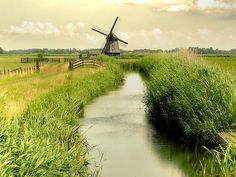Dutch 17th century polder windmill...  (A scene like this is a Favorte Thing!)