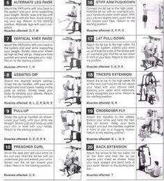 Symbolic Gold's Gym Xrs 50 Exercise Chart Max By Weider Exercise Chart Weider Platinum Plus Home Gym Exercise Chart Bowflex Revolution Workout Routines Home Gym Exercises, Home Exercise Routines, At Home Workout Plan, At Home Workouts, Workout Routines, Daily Workouts, Workout Plans, Gym Workout Chart, Gym Workout Tips
