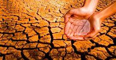 Entre os 45 municípios afetados pela seca estão, Afogados da ingazeira, Salgueiro e São José do Egito.