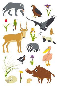 Steppe animals on Behance