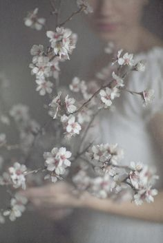 So looking forward to something - anything - blossoming.