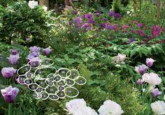 Näin onnistuu varjoisa piha: Kukkatarha valtaa siimeksen - Suomela - Jotta asuminen olisi mukavampaa