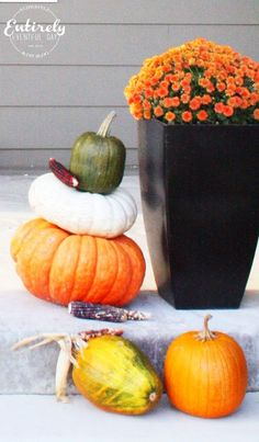 Time to decorate your front porch . Pull out the fake pumpkins and plastic skeletons. Think real hard about w. Fake Pumpkins, Halloween Porch, Porch Decorating, Fun Ideas, Michael Jackson, Thriller, Diy Projects, Indoor, Balcony Decoration