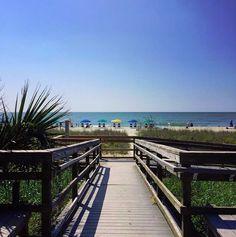 Myrtle Beach Boardwalk, Myrtle Beach Hotels, Myrtle Beach Vacation, Myrtle Beach Sc, South Carolina Vacation, Vacation Destinations, Nature Photos, Beaches, Beach House