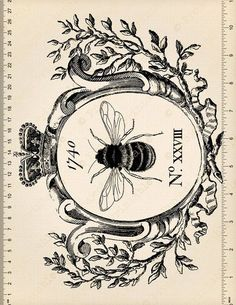 If you want to buy or collect vintage costume jewelry, learn what to look for and where to look. There is something for everyone who is interested in collecting vintage jewelry. Vintage Labels, Clipart Vintage, Printable Vintage, Vintage Clip, Bee Drawing, Bee Illustration, Illustrations, Etiquette Vintage, Images Vintage