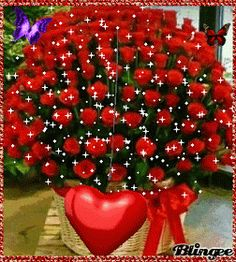 Holiday Party Discover Happy Anniversary my love Valentines Greetings Birthday Greetings Happy Valentines Day Love You Gif Love You Images Happy Birthday Pictures Happy Birthday Messages Flowers Gif Love Flowers Happy Birthday Cake Images, Happy Birthday Celebration, Happy Birthday Flower, Happy Birthday Wishes Cards, Happy Anniversary Cards, Beautiful Rose Flowers, Flowers Gif, Beautiful Love Pictures, Happy Valentines Day