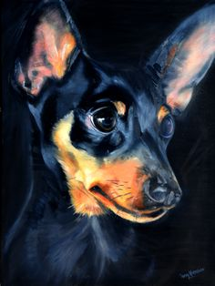The Min Pin who thinks he is the largest dog in the world Painted by Terry Kneeshaw - bring it on.