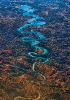 The Blue Dragon !! | See More Pictures
