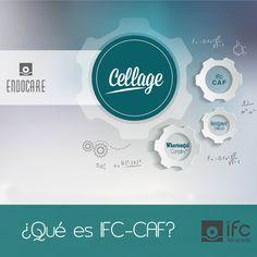"""Hoy en """"Todo por tu Piel"""", tenemos la suerte de contar con la colaboración de la Dra. Arancha Delgado, Asesor Científico de IFC. Nos explica que es IFC-CAF, una de las tecnologías que nos ofrece Endocare Cellage"""