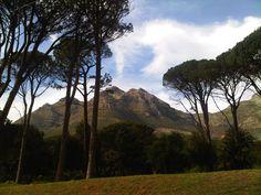 Deer Park Cape Town