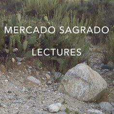 """MERCADO SAGRADO LECTURES // SATURDAY   <> <>   12PM -   Eve James of Eve of Astrology & Jane Anne Thomas of House of the Standing Moon  """"Monkeys in the Mirror & Tigers in the Sea: Moving through May's threshold into the Womb of Change""""  <> <>  Suckle the wisdom of the Full Milk Moon from the lens of both Vedic Astrology and Shamanic Animal Wisdom traditions with Eve James & Jane Anne Thomas. Two of our favorite readers offer tools for working within May's ..."""