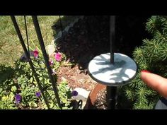 Solar lights - Restoring Back To Life after they stop Recharging Clear Nails, Light Project, Solar Lights, Dollar Tree, Solar Panels, Restoration, Projects To Try, Make It Yourself, Youtube