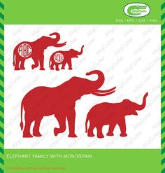 Elephant Family With Monogram frame SVG DXF PNG eps by Alligcutter