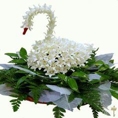 Swan flowers