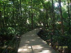 Jardin Botanico...Medellin